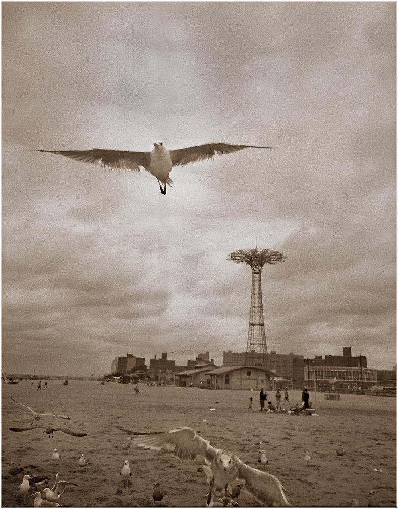 coney-island-parachuteJump