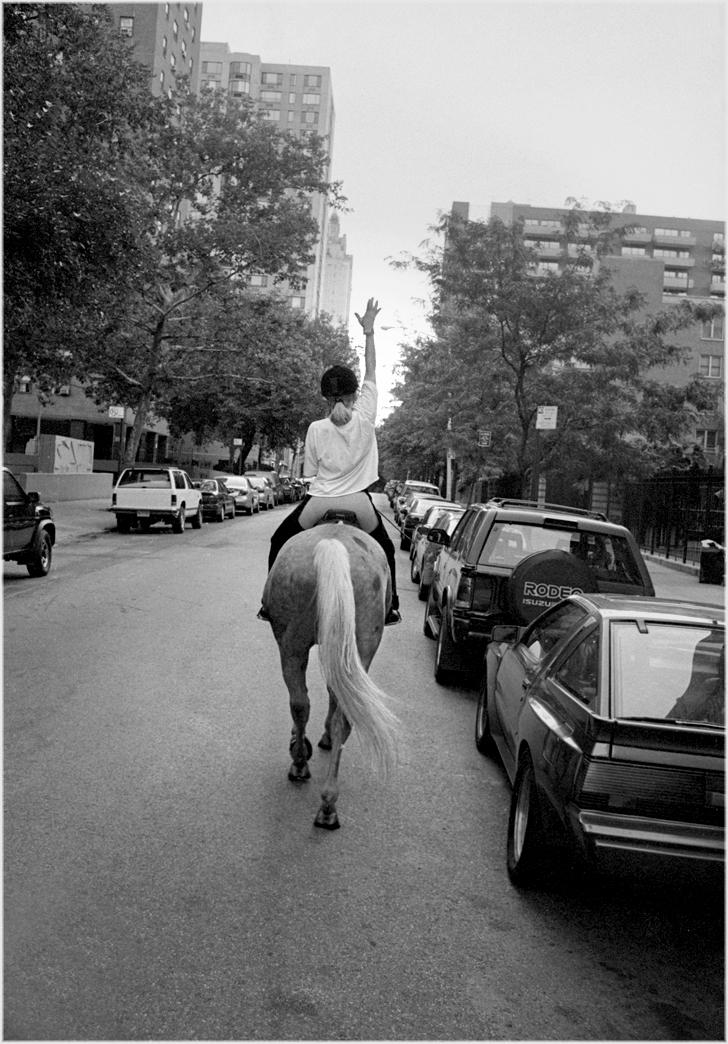 horses-manhattan-nyc