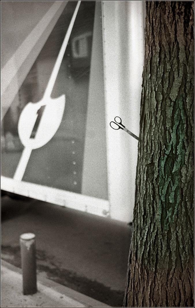 Scissors-TREE-2013 copy