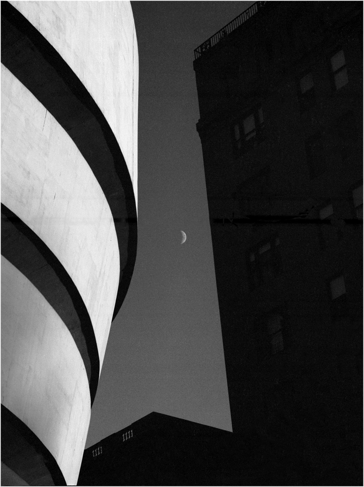 Guggenheim-Moon