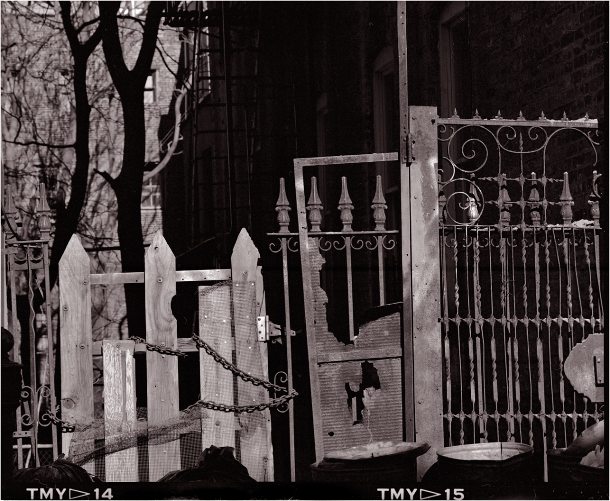 Harlem-Fences-gates-matt-weber