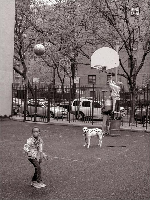 basketball-matt-weber