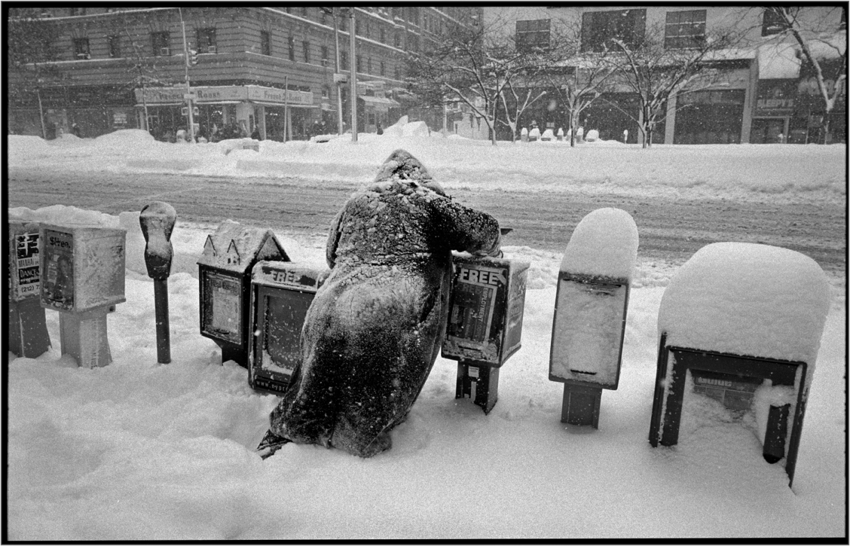 homeless-snow-nyc