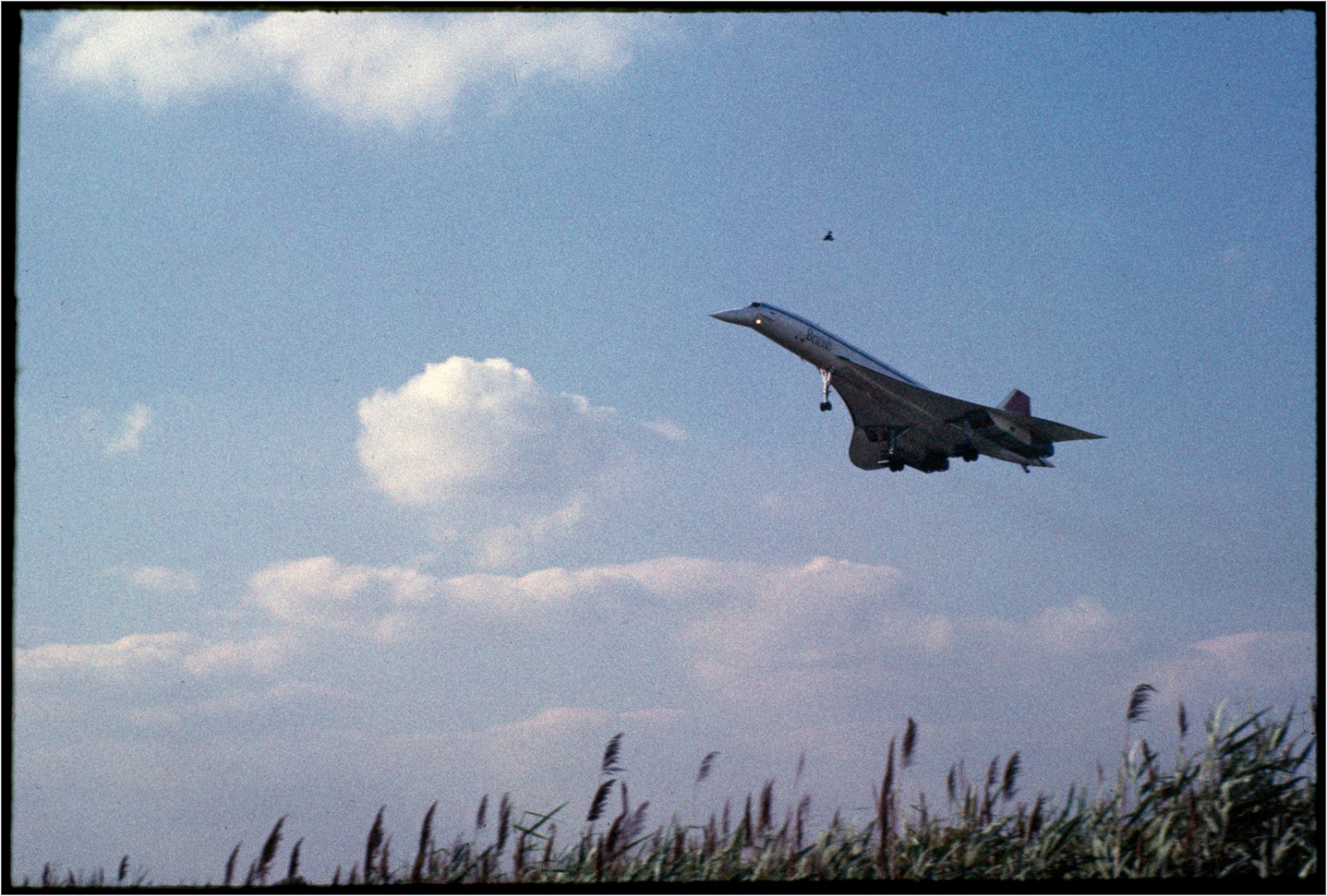 Concorde-Lands-JFK-1985 copy