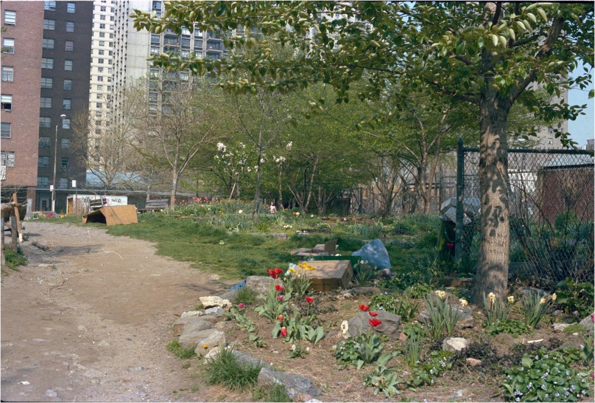 Garden-2-1985 copy