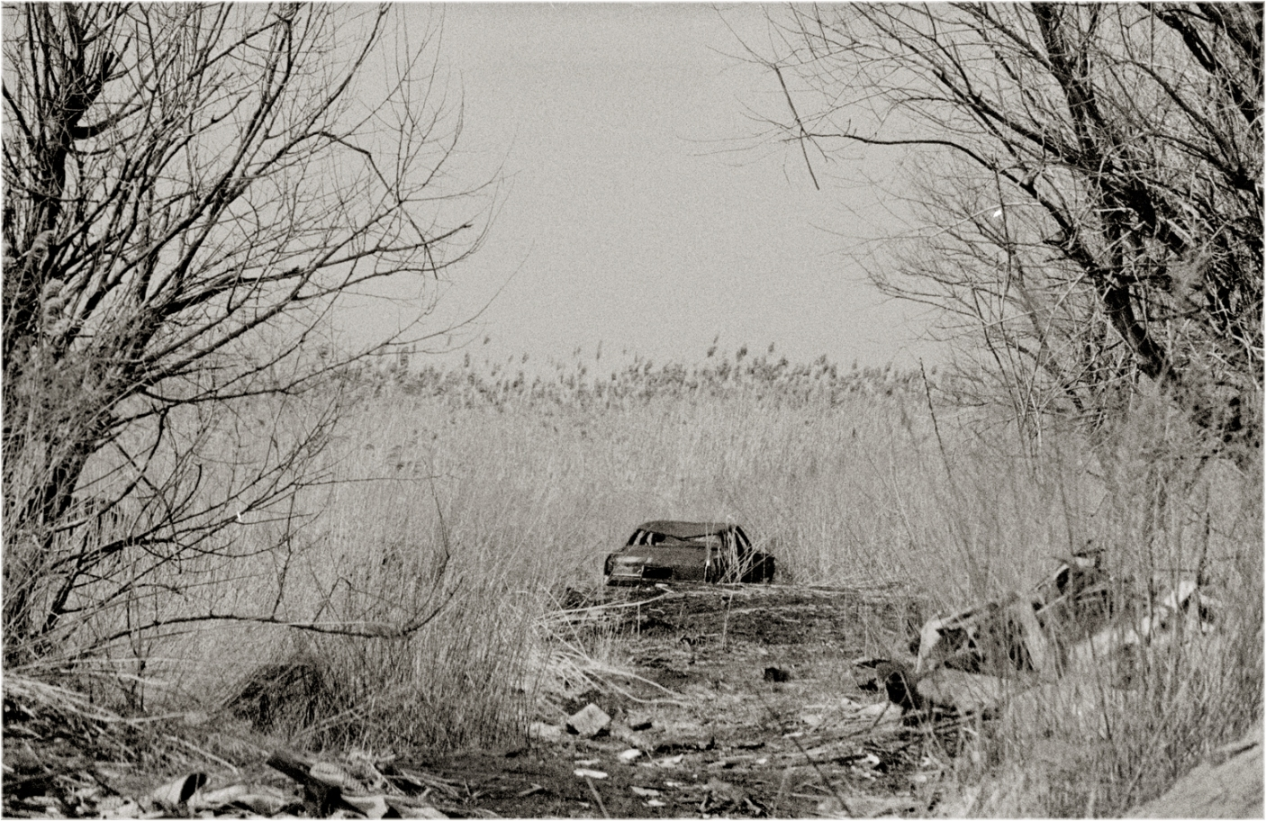 Wetlands-Wreck-1990 copy