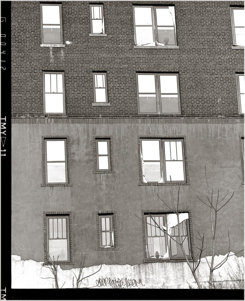 """""""Window Decals"""" Harlem 1988"""