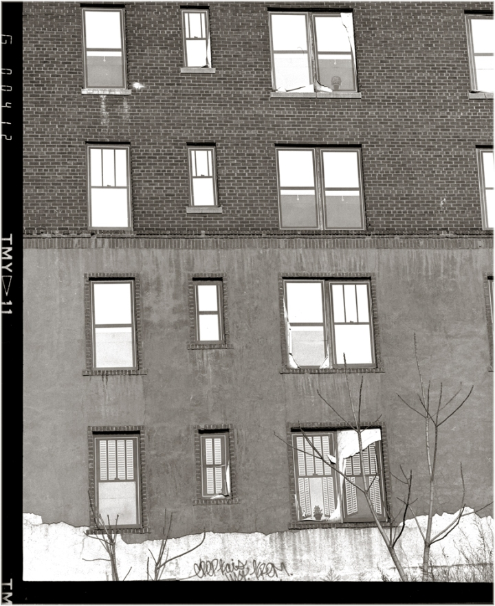 Harlem-FakeWindowDecals-1988 copy