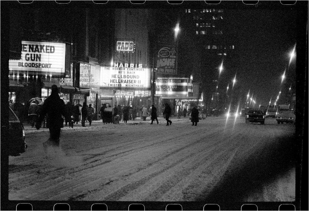 42-snow-night-naked-gun-1989-copy