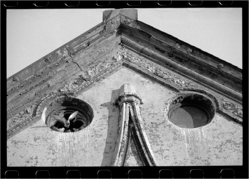 pigeon-church-1987-copy